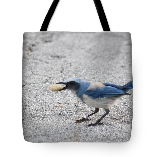 Florida Scrub Jay Tote Bag