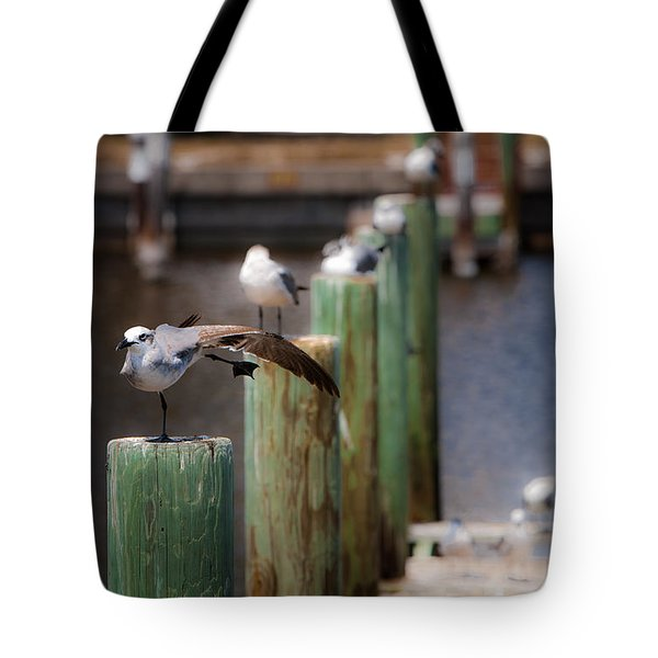 Florida Seagull Playing Tote Bag by Jason Moynihan