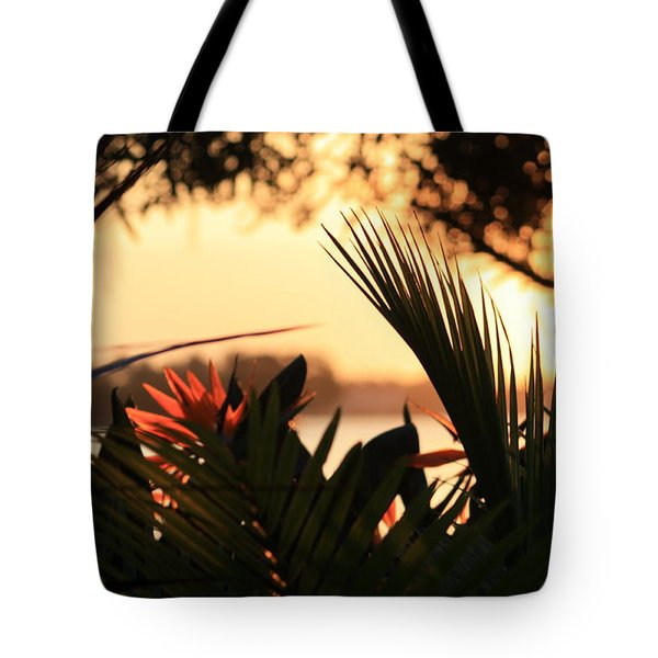 Tote Bag featuring the photograph Florida Sunrise by Diane Merkle