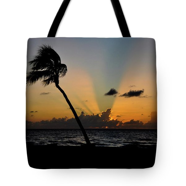 Tote Bag featuring the photograph Florida Sunrise Palm by Kelly Wade