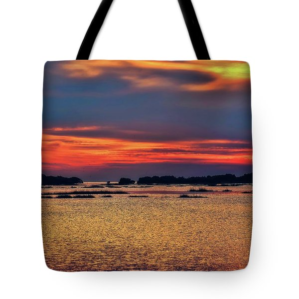 Tote Bag featuring the photograph Florida West Coast  by Louis Ferreira