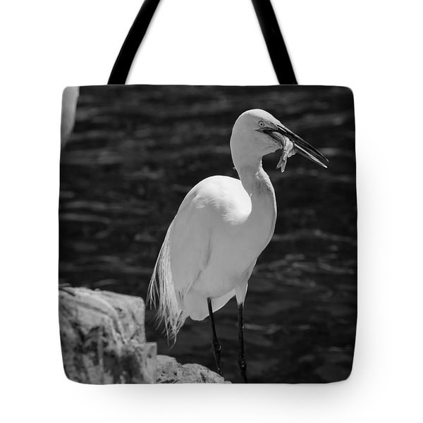 Florida White Egret Tote Bag by Jason Moynihan