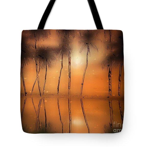 Floridian Waters Tote Bag by Adam Olsen