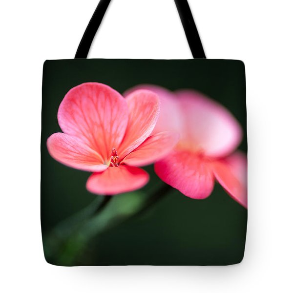 Flourish Tote Bag by Tim Nichols