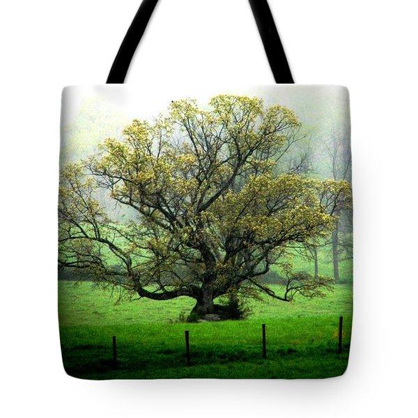 Flourish Where You Grow Tote Bag by Angela Davies