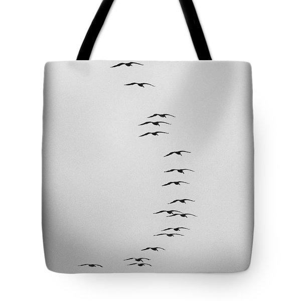 Flow Of The Pelican Tote Bag