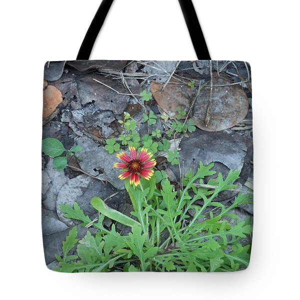 Flower And Lizard Tote Bag by Kay Gilley