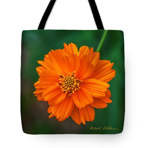 Tote Bag featuring the photograph Flower Color by Edward Peterson