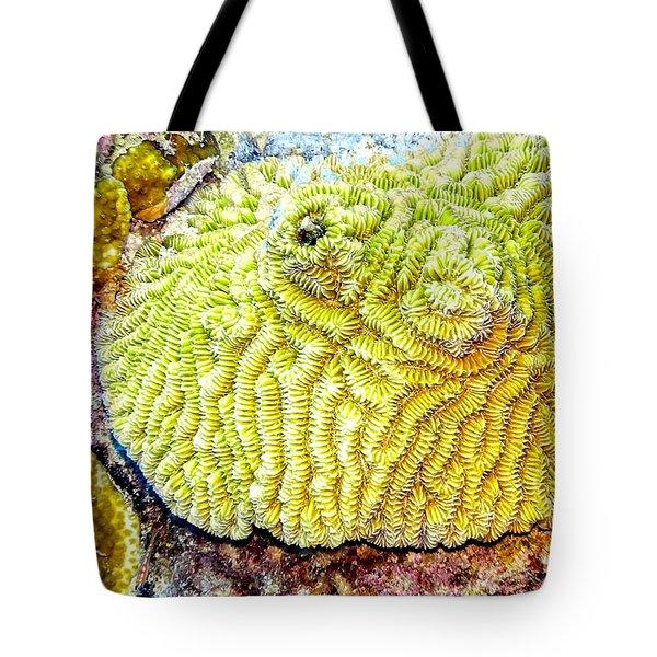 Flower Coral Tote Bag
