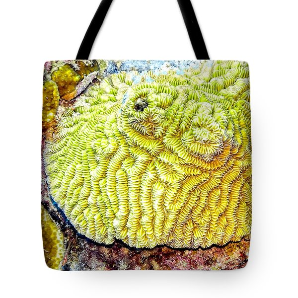 Tote Bag featuring the photograph Flower Coral by Perla Copernik