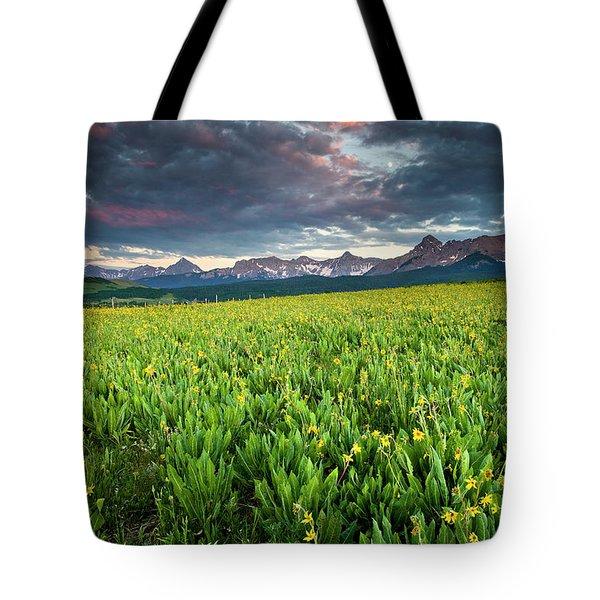 Flower Field And Sneffels Range Tote Bag