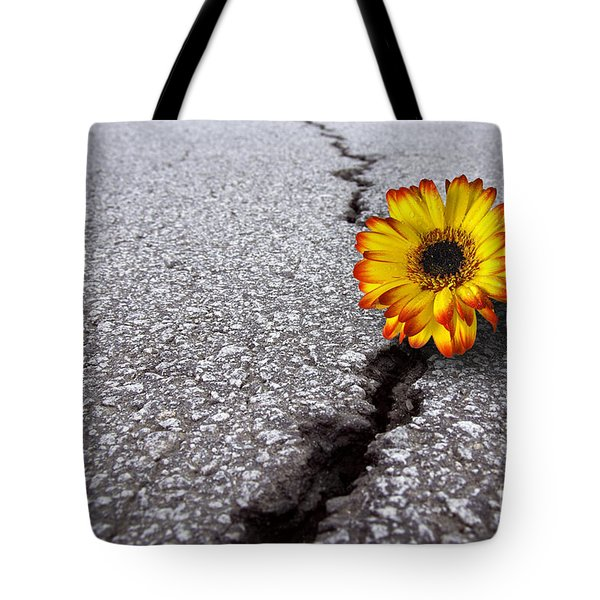 Flower In Asphalt Tote Bag by Carlos Caetano