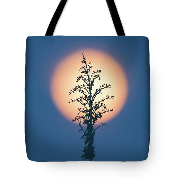 Flower Moon May 2017 Square Tote Bag by Terry DeLuco