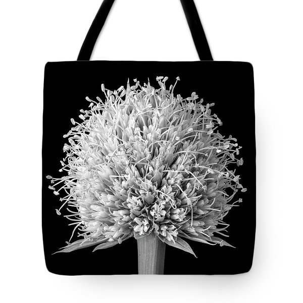 Flower Of Rattlesnake Master Tote Bag by Jim Hughes