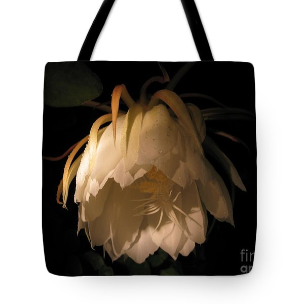 Flower Of The Night 02 Tote Bag by Andrea Jean