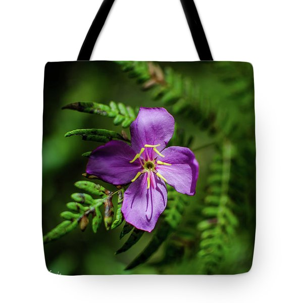 Flower On The Fern Tote Bag by Stefanie Silva