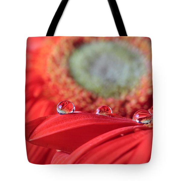 Flower Reflections Tote Bag