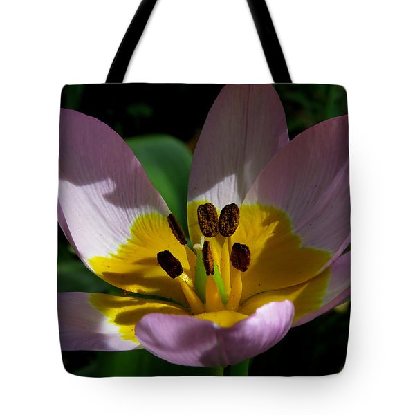 Flower Shadows Tote Bag