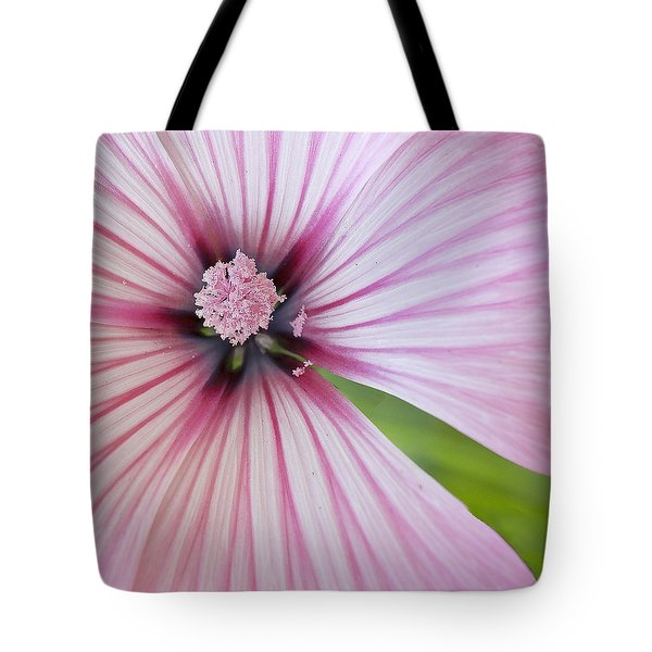 Tote Bag featuring the photograph Flower Star by Elvira Butler