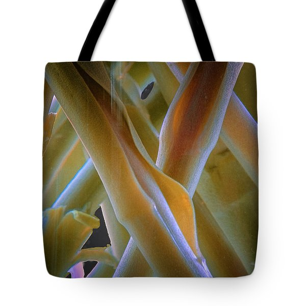 Tote Bag featuring the photograph Flower Stems by Tom Singleton