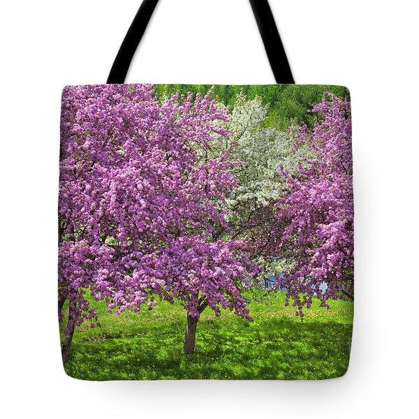 Flowering Crabapples Tote Bag