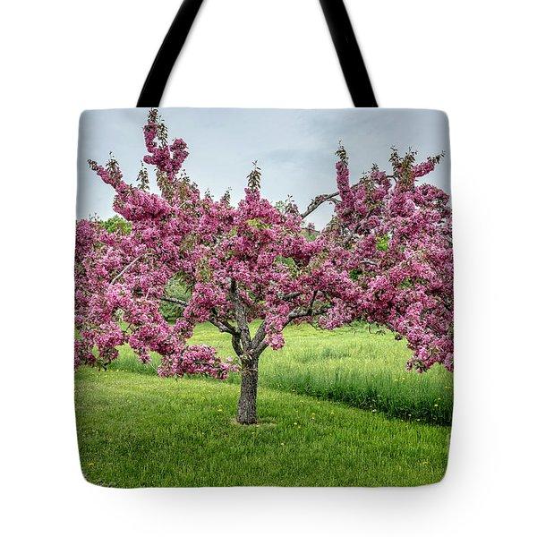 Flowering Crabtree Tote Bag