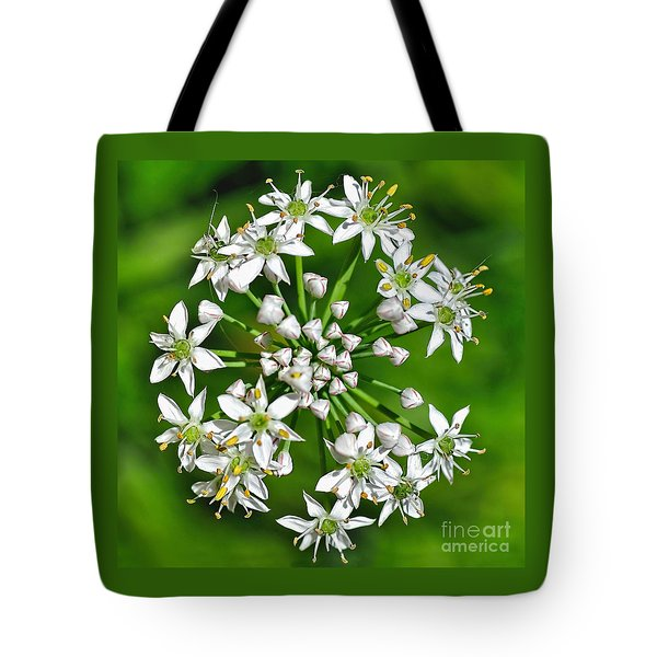 Flowering Garlic Chives Tote Bag by Kaye Menner