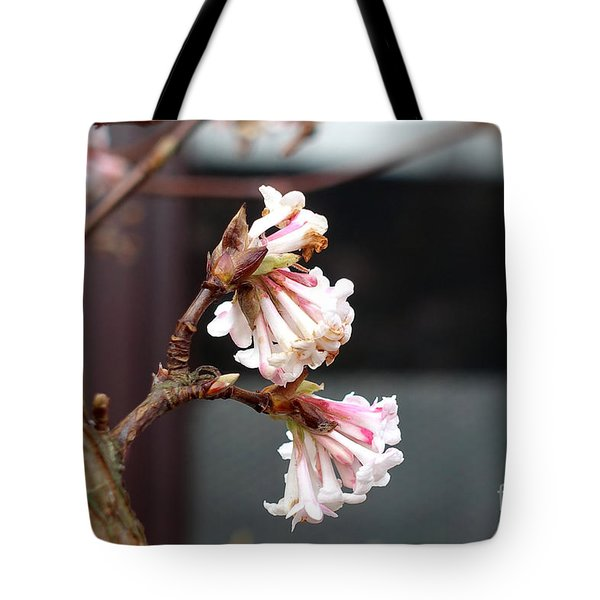 Flowering In December Tote Bag