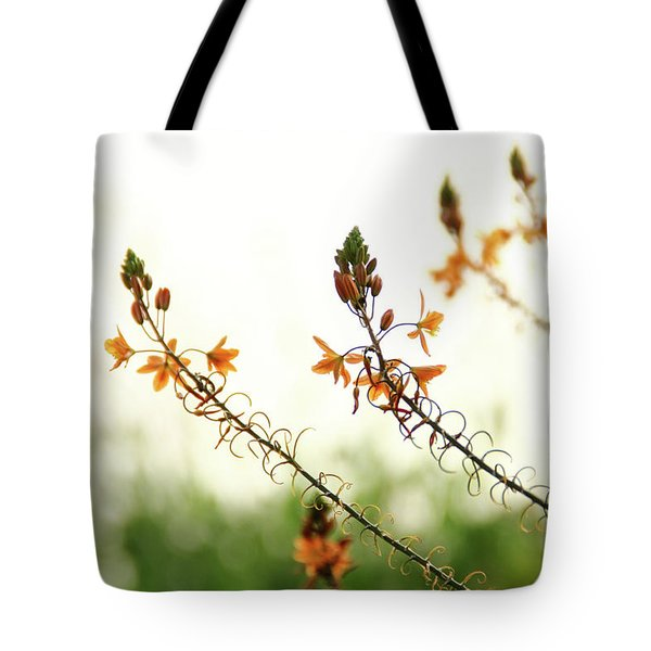 Tote Bag featuring the photograph Flowering In Israel At The Sunset by Yoel Koskas