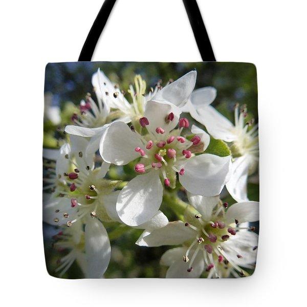 Flowering Of White Flowers 2 Tote Bag