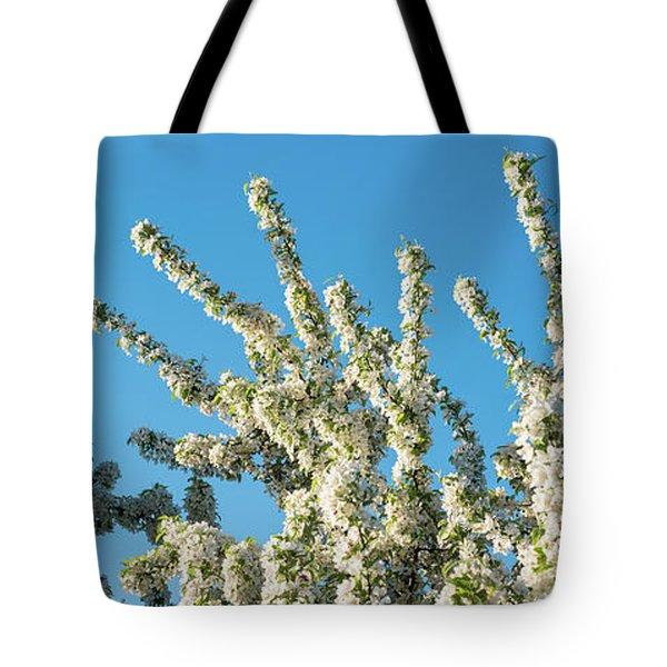 Flowering Pear Tree Number 2 Tote Bag