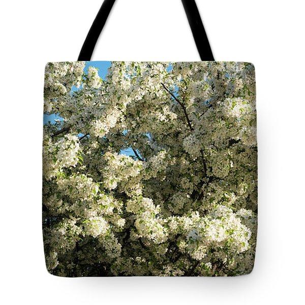 Flowering Pear Tree Tote Bag
