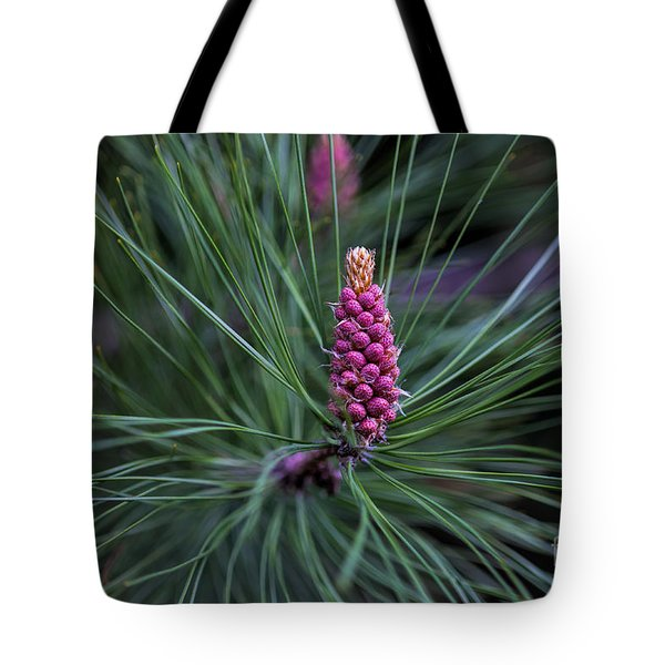 Flowering Pine Cone Tote Bag