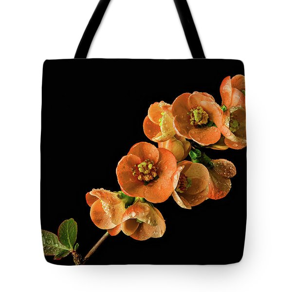 Tote Bag featuring the photograph Flowering Quince Orange by Mary Jo Allen