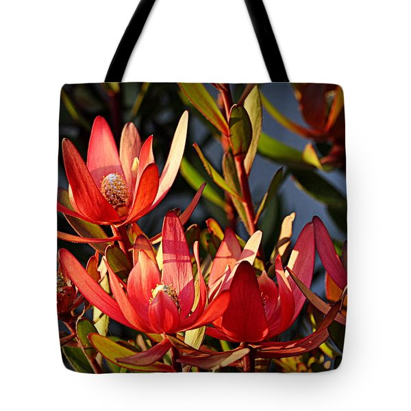 Tote Bag featuring the photograph Flowers At Sunset by AJ Schibig