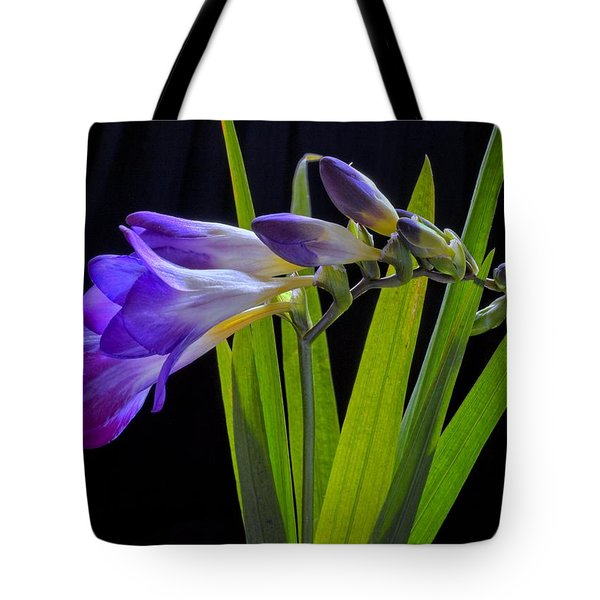 Flowers Backlite. Tote Bag by Josephine Buschman