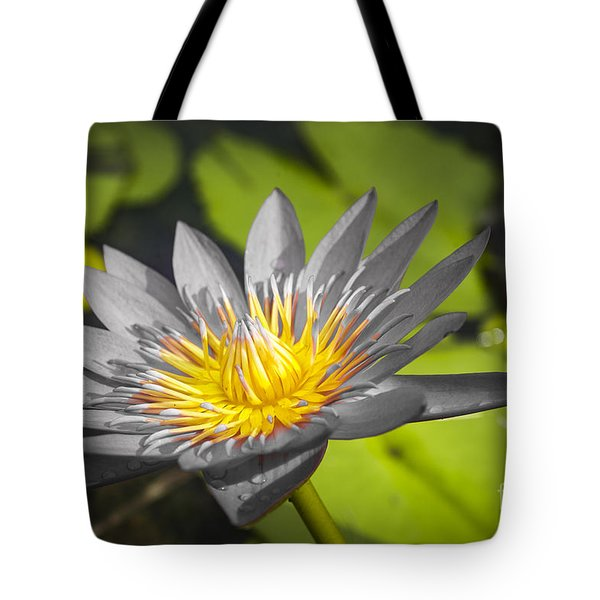 Flowers Of Grey Tote Bag