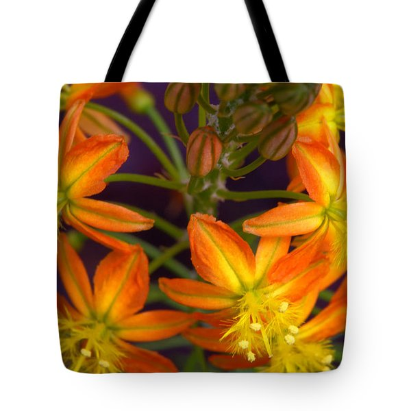 Flowers Of Spring Tote Bag by Stephen Anderson