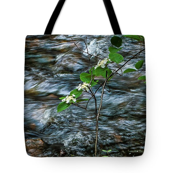 Tote Bag featuring the photograph Flower Against Water 8673 by G L Sarti