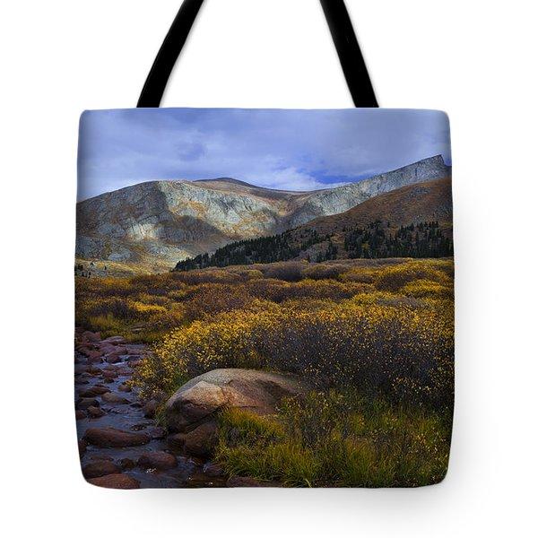 Flowing From Bierstadt Tote Bag