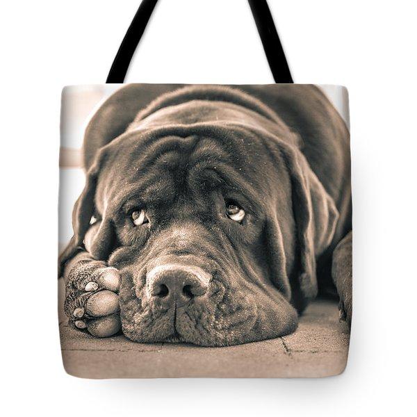 Floyd Tote Bag by Racheal Christian