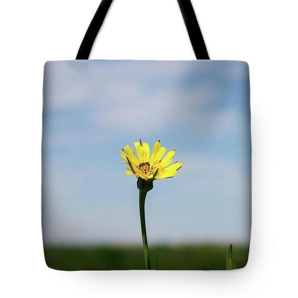 Tote Bag featuring the photograph Flp-1 by Ellen Lentsch