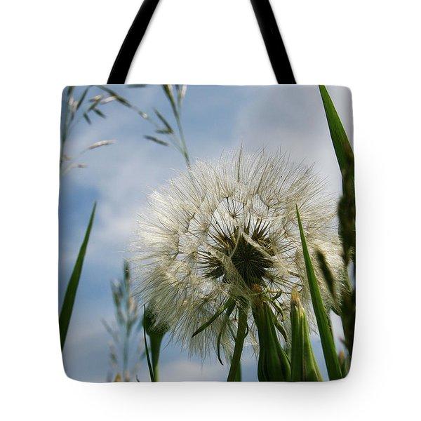 Tote Bag featuring the photograph Flp-3 by Ellen Lentsch