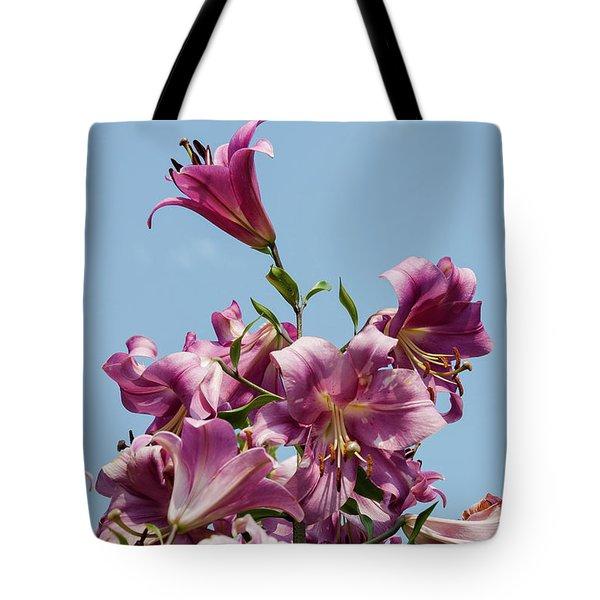 Tote Bag featuring the photograph Flp-5 by Ellen Lentsch