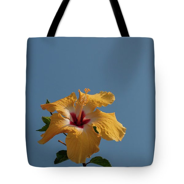 Tote Bag featuring the photograph Flp-6 by Ellen Lentsch