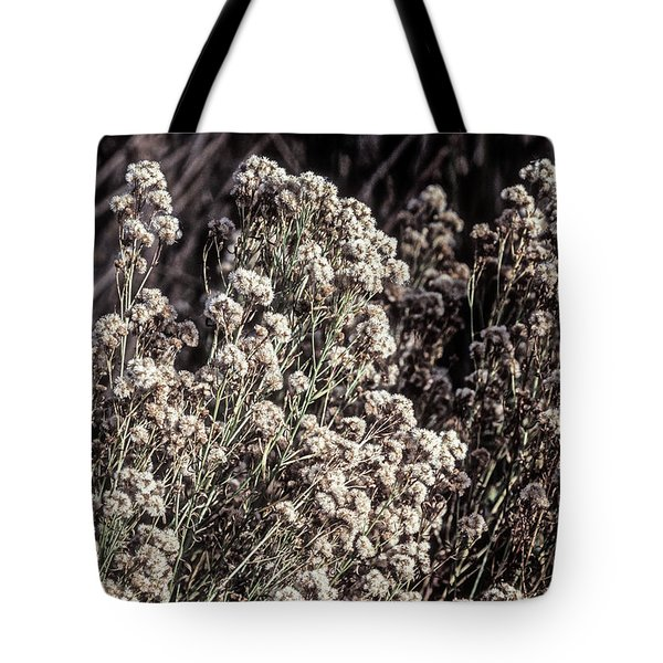 Fluff And Seeds Tote Bag by John Brink