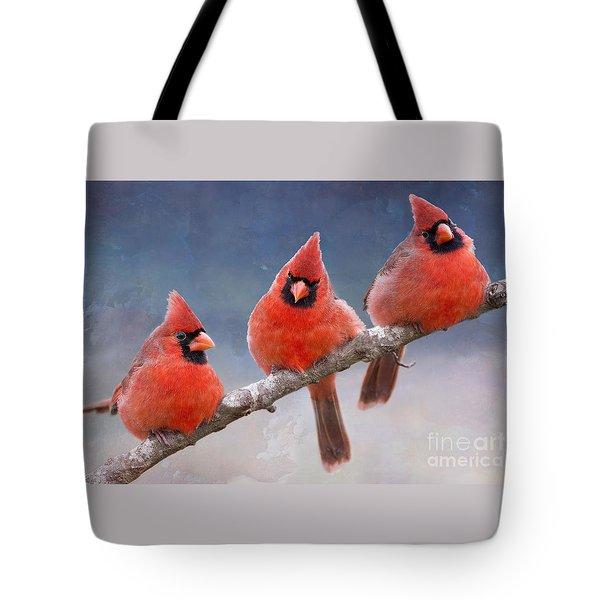 Fluffy Cardinal Trio Tote Bag
