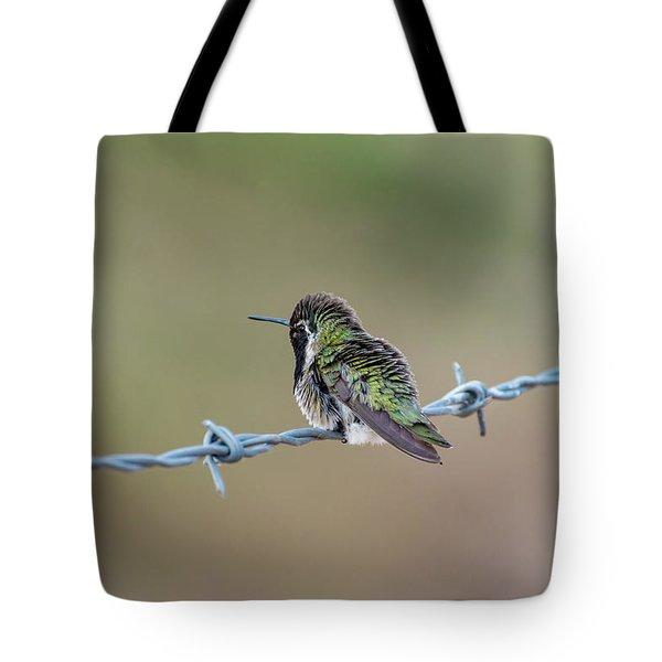 Fluffy Hummingbird Tote Bag