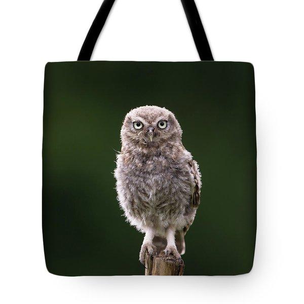 Fluffy Mcfluff-face Tote Bag