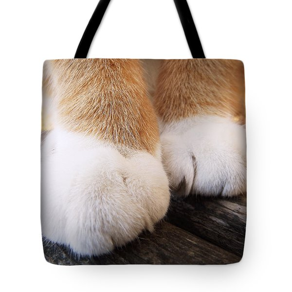 Fluffy Paws Tote Bag